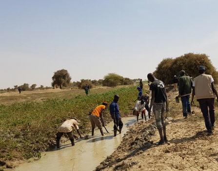 Emergentie Mali Clingendael
